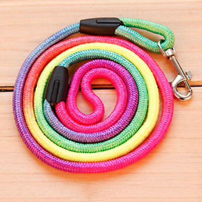coloré TRACTION corde nylon Marche Laisse apprentissage LAISSE SANGLE POUR