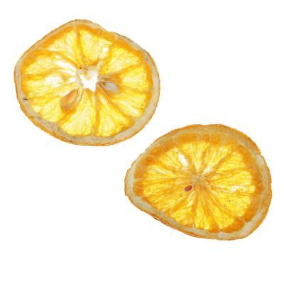Dried Pressed Exopy Fruits Lemon Slices Plant Herbarium for Resin Casting