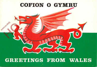 Picture postcard greetings from wales welsh dragon salmon picture postcard greetings from wales welsh dragon salmon m4hsunfo