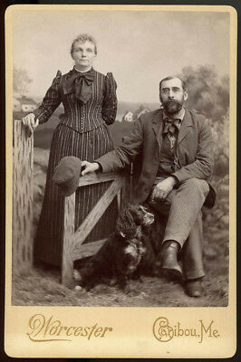 COUPLE & SPANIEL TYPE DOG MAINE 1880s CABINET CARD PHOTO GREAT PAINTED BACKDROP