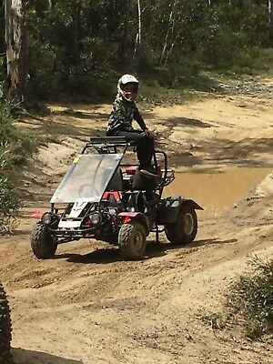 Twister side by side buggy.
