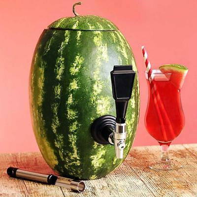 Watermelon Keg Tap kit – make your own Fruit dispenser, anguria, rubinetto zucca