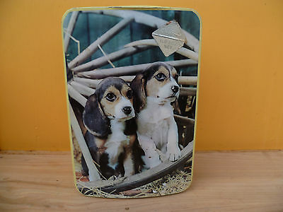 Vintage Old Australian Dog Tin, Old Tin Griffiths