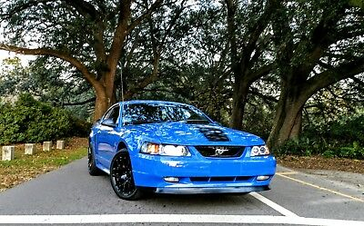 2003 Ford Mustang  2003 Mustang Mach 1