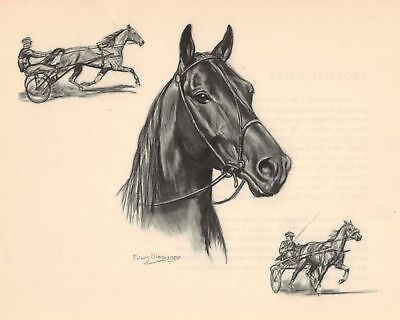 THE STANDARDBRED HORSE Color Print Edwin Megargee Vintage Book Plate ...