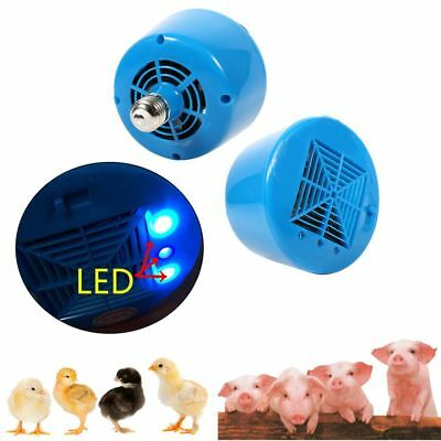 Piglets Poultry Heat Lamp Livestock Warm LED Brooder Chicken Hatching Bulb