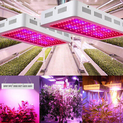 1000W 1200W LED Grow Light Panel Lamp for Hydroponic Plant Growing Full Spectrum