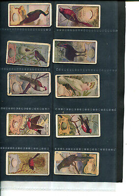 Cigarette Cards Wills  Part-Lot ' - Birds X 10 Cards