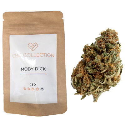 cannabis MOBY DICK 2gr
