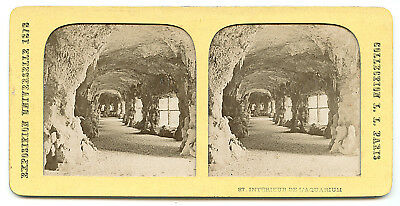 PHOTO STEREO Expo Universelle 1878 PARIS Aquarium - Hold to Light STEREOVIEW