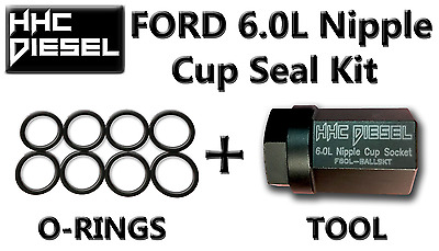"Ford 6.0L ~HHC Diesel~ Oil Rail Rebuild Kit: 1/2"" Drive Impact Socket & 8 Seals"