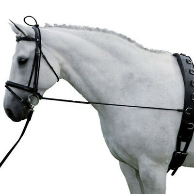 Black Horse Neck Stretcher Horse Training Grooming Tool Equestrian Supplies