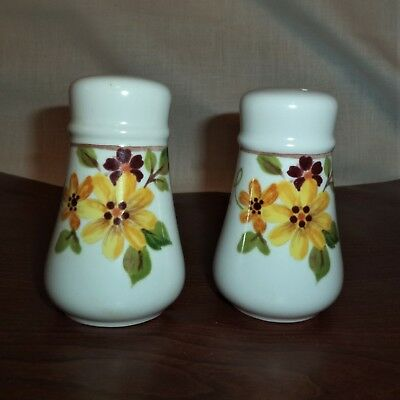 Noritake Progression Japan SALT & PEPPER Shakers BERREDIN Floral NEW Ceramic