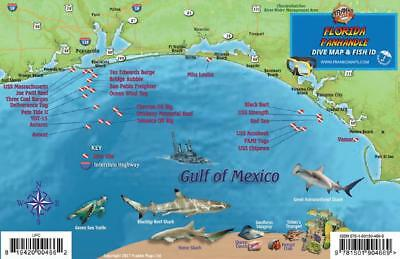 FRANKO MAPS, FLORIDA State Reef Creatures Fish ID-Card - $4.95 ...