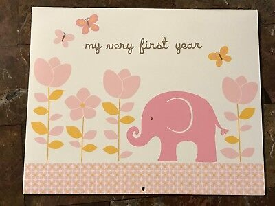 Carter's Baby's First Year Calendar Girls Pink Elephant