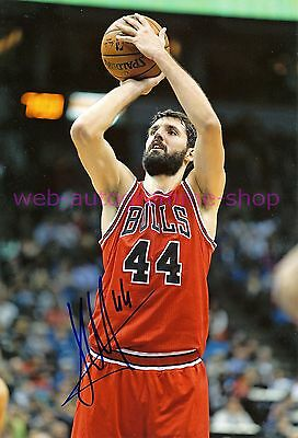 NIKOLA MIROTIC - E - NBA CHICAGO BULLS - IN PERSON AUTOGRAMM AUTOGRAPH 20x29 CM