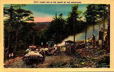 Postcard Camp Life in the Heart of the Mountains Unused Linen