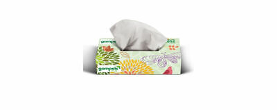 Soclean 2 Ply Botanical Facial Tissues Pack of 100 (36 Boxes) | 3600 Tissues