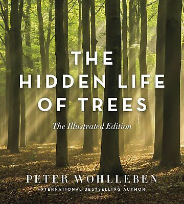 NEW The Hidden Life of Trees Hardcover Illustrated Edition by Peter Wohlleben