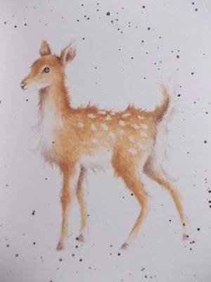 """FALLOW DEER - BEAUTIFUL  IVORY MOUNTED PRINT 8"""" x 6""""  -  HANNAH DALE - THE COUNT"""
