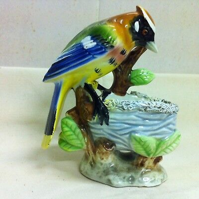 Gorgeous colourful JAY BIRD with NEST figurine ~ Vintage 1950s ceramic porcelain