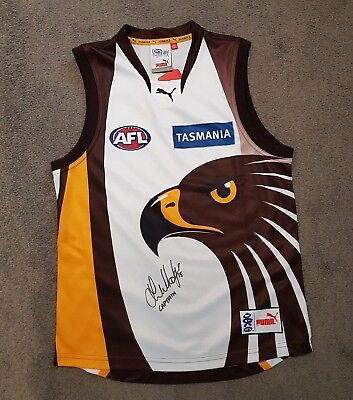 Hawthorn Hawks Away Jumper Hand Signed By Luke Hodge - Rare