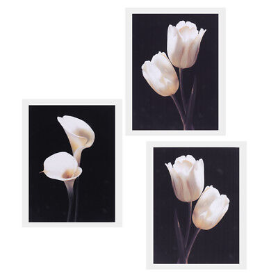 3pcs Modern Art Oil Painting Canvas Print Wall Art Poster Picture Home Decor