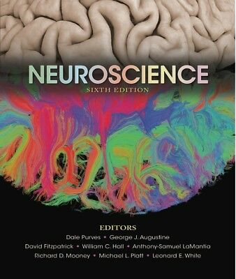 Pdf principles of auditing and other assurance services by ray neuroscience 6th edition pdfebook fandeluxe Image collections