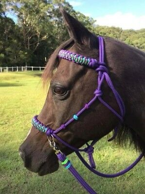 Bitless Bridle, Reins, Lead Rope Pony