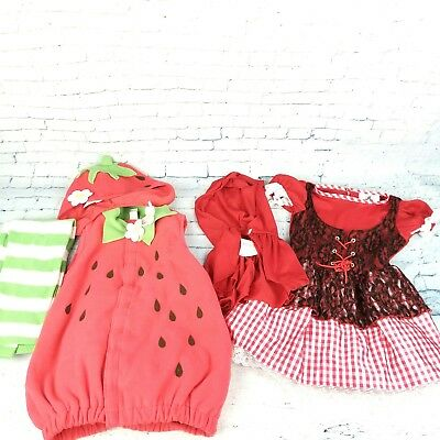 Toddler Costumes Dress Up Play Time Strawberry 4T-5 Little Red Riding Hood 2t-4T