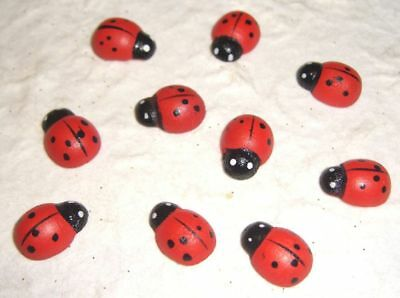 25 LADY BUGS (14mm):::  Decorate Hair Clips Cards Scrapbooks etc