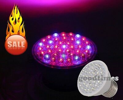 38 LED Grow Light E27 Licht Voll-Spektrum Indoor Pflanzen Lampe Rot