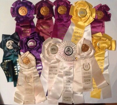lot of 12 vintage Horse Show Ribbons