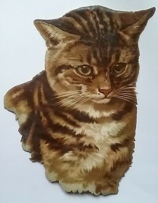 Very Large Victorian Scrap. Pretty Tabby Cat. Approx.23x20cms