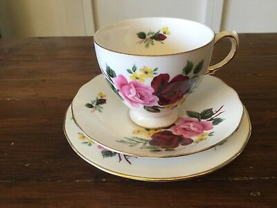 Vintage Queen Anne Dark Red and Pink Roses Trio, Cup, Saucer & Plate