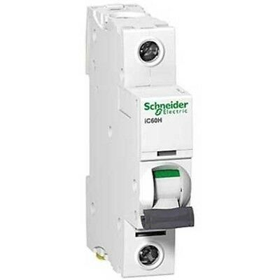 Schneider Electric Offer Acti9 iC60N 1P 6KA C Curve Miniature Circuit breaker