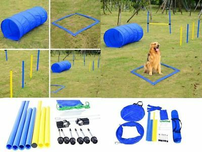 Pet Agility Training Set Blue Yellow Dogs Obstacle Course Tunnel Poles Crossbar