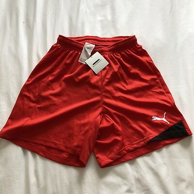 Puma Mens Red Medium Football Shorts