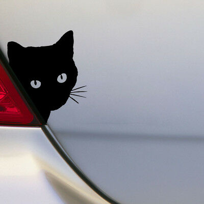 Cat Face PEERING Funny Cars Decals Window Truck Auto Bumper Laptop Wall Stickers