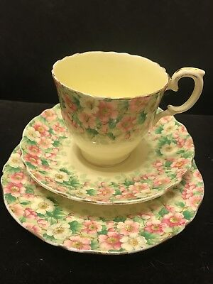 Pretty Crown Staffordshire Trio Maytime  Pattern Cup Saucer Plate