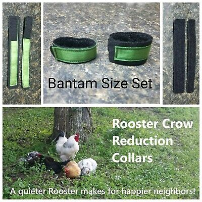 1 set BANTAM Rooster Crow Reduction Collars (aka - no crow collar) - Green