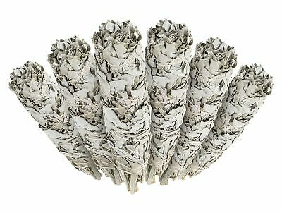 White Sage Cali Smudge Stick 6 Bundles, House Cleansing Made in USA