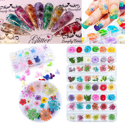 Colorful 3D Decorated Real Dry Dried Flower for UV Gel Acrylic Nail Art Tips DIY