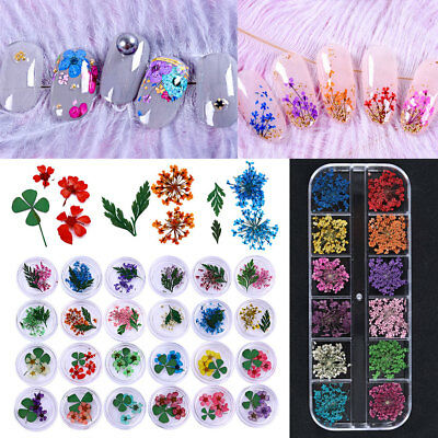 Real Dry Dried Flowers 3D Nail Art Decorations for Acrylic UV Gel DIY