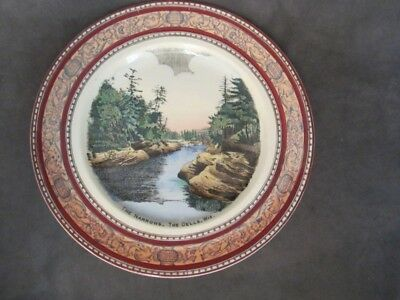 F1 Adams Old English Staffordshire Ware -  The Narrows DELLS Wisconsin Plate