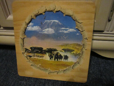 Tasmanian Pine Elephant  Wall Picture Ready To Hang ***must See***