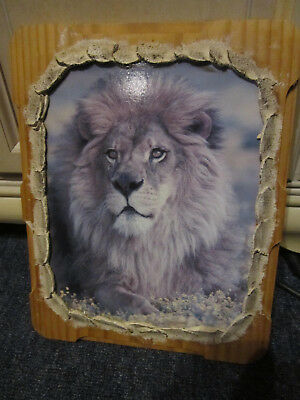 Tasmanian Pine  Lion  Picture Ready To Hang ***must See***
