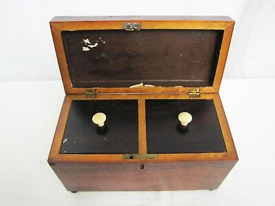 Antique Late 19th Century English Wooden Tea Caddy
