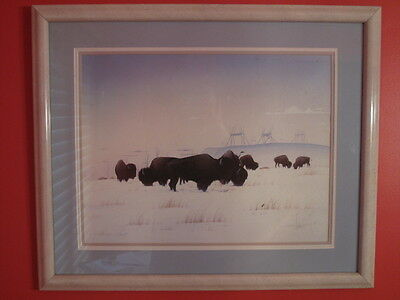 """ MESSENGER OF THE EVENING "" BY DONALD VANN / w/ many buffalo"