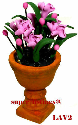 Dept. 56 Seasons Bay Potted Flowers Lavender New 53331 LV2 Free Shipping